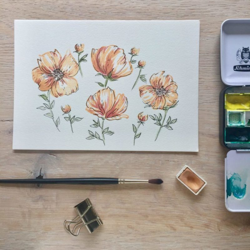 Flowers painted with watercolour