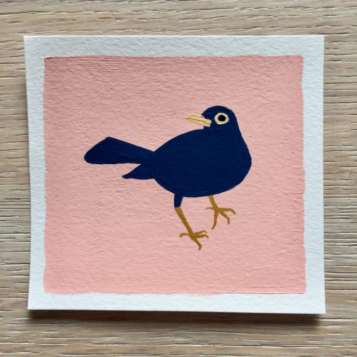 Blue blackbird illustration on a pink background