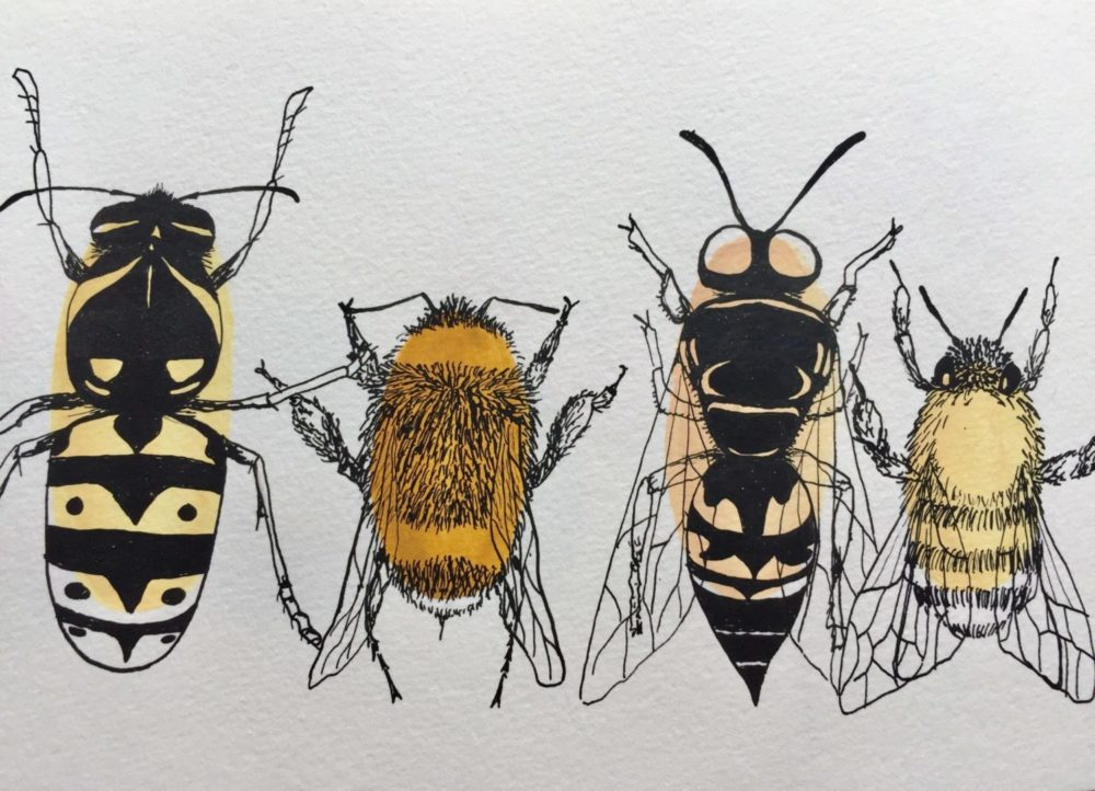 Illustrations of stinging insects like bees, wasps and bumble bees.